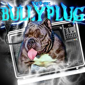 bully plug