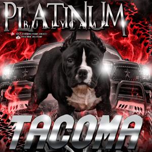 tacoma final